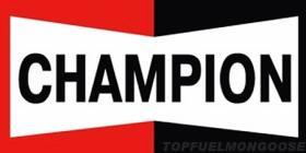 Escobillas limpiaparabrisas EasyVision  Champion